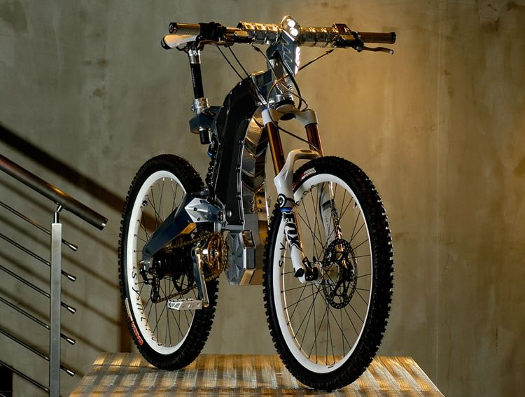 M55 Hybrid Bike Beast
