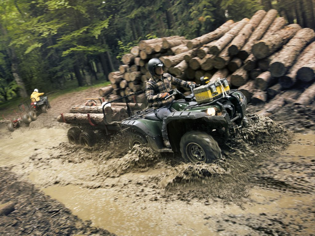Yamaha Grizzly 550 EPS (2012)