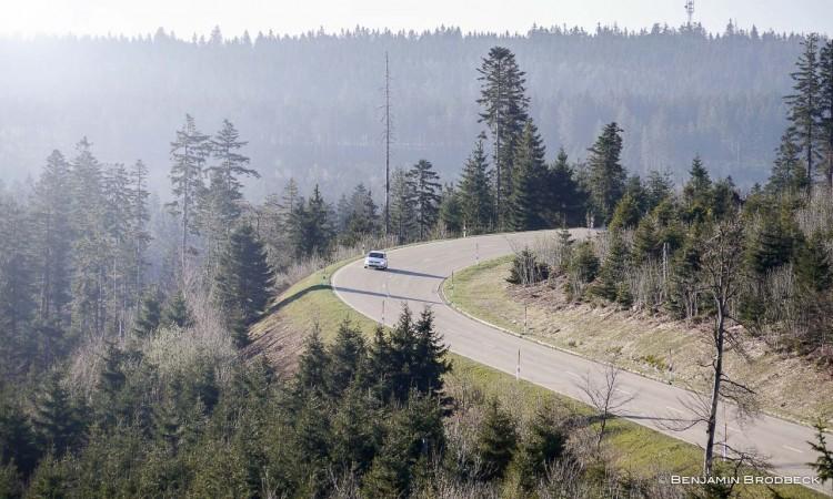 Der Polo liebt Kurven - und das in dieser malerischen Landschaft, morgens um halb 9.