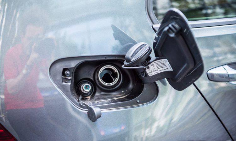 CNG Days VW Golf TGI Test und Fahrbericht 30 750x450 - Neuer Erdgas-Golf TGI (CNG) im Test: Mit vier Strohballen 11.400 Kilometer weit - CO2-neutral!