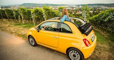 Fahranfaenger und die Autoversicherung das Auto guenstig versichern 390x205 - Fahranfänger und die Autoversicherung: das Auto günstig versichern